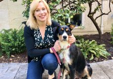 Pet CHEK: Mama dog Tessa needs her forever home after pups adopted