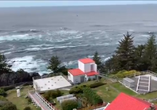 Karen Zucharec, a longtime lighthouse keeper who works at Cape Beale Lighthouse near Bamfield, says cooking food, gardening and crafts are helpful activities that people can do during this isolation period.