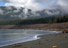 Port Renfrew asks for no visitors during the May long weekend