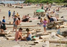 'Beaches are getting overcrowded': CRD reminds everyone of the need for physical distancing