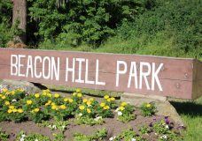 Victoria council votes to keep Beacon Hill Park partially closed to vehicles