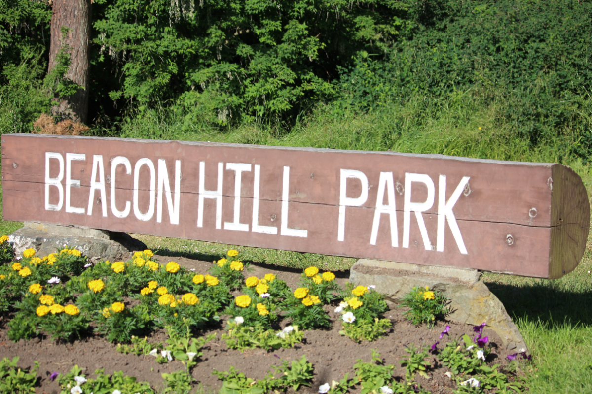 Victoria files petition in B.C. Supreme Court regarding sheltering in Beacon Hill Park