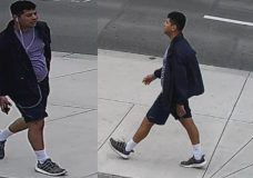 VicPD trying to identify suspect who 'threw his body' into woman that was near him