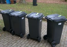 Bear prevention: Cowichan residents could see $230 fine if curbside garbage is left overnight