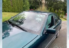 Police looking for a man who smashed the window of BMW in Saanich