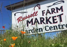A sign for Russell Farm Market in Chemainus.