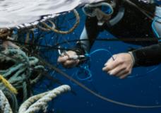 B.C. announces $3.5 million fund to clean up remote shorelines