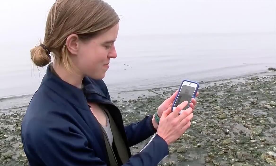 CHEK Upside: Environmental group launches free educational campaign on Salish Sea biodiversity