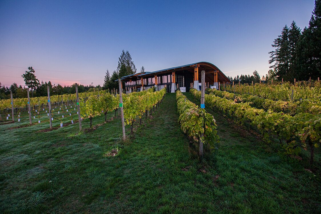 Cowichan Valley Wine Festival will take place this year