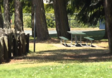 Central Saanich votes against allowing alcohol in municipal parks
