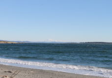 Police say man seen secretly filming other people on an Oak Bay beach