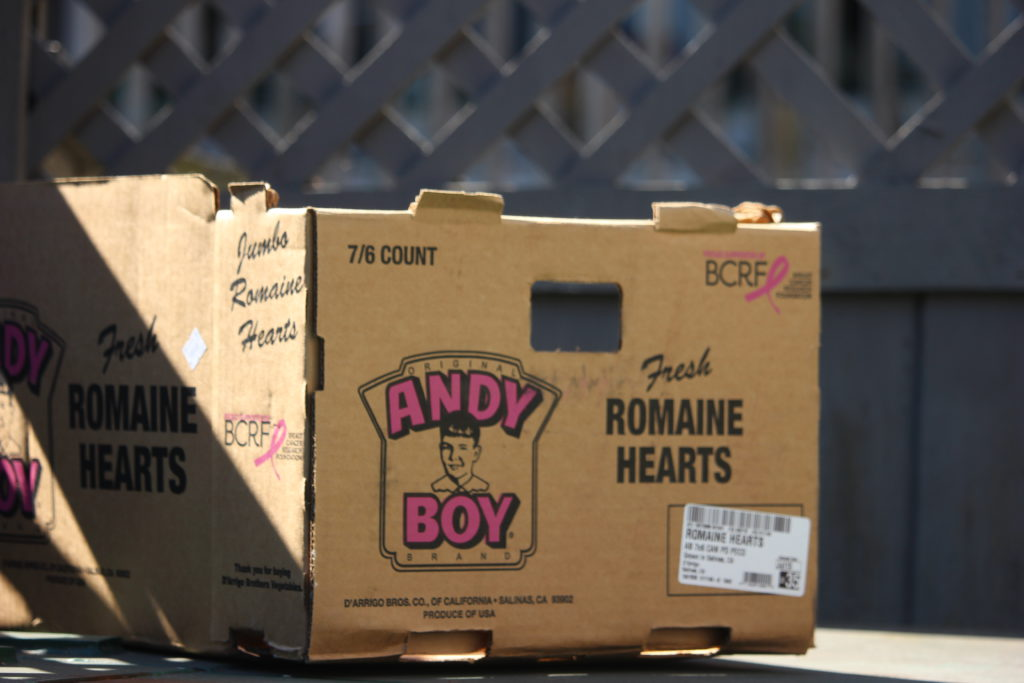 Increased cardboard causing collection delays in Nanaimo