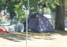 Calls for new strategy at Victoria encampments grow