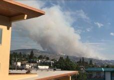 Spreading wildfire prompts evacuation order near Okanagan Falls, B.C.