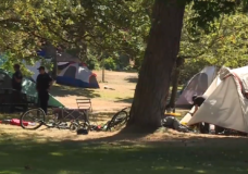 Police chief says 'significant increase' in homeless moving to Victoria, outreach workers disagree