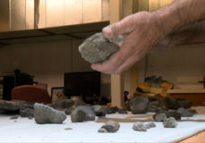 Dinosaur find near Cumberland could be second elasmosaur found by brothers