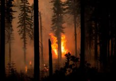 'Extremely extreme:' High temps push western wildfire risk into uncharted territory