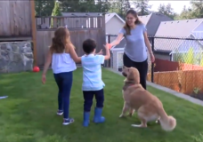 CHEK Upside: West Shore dog reunites with family after missing for 13 days
