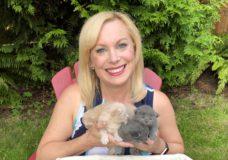 Pet CHEK: Teeny, tiny two-week old kittens
