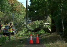 Thousands without power as windstorm hits Vancouver Island Tuesday