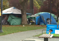 Victoria council could soon ban around-the-clock camping in parks
