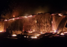 Firefighters extinguish blaze in Nanoose Bay, horses saved