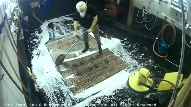 CHEK Upside: Island company that livestreams carpets being cleaned sees record sales
