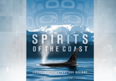 This Week in History: Royal BC Museum releases book on orcas ahead of its upcoming exhibition