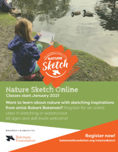 Junior Winter Online Nature Sketch @ online