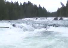 BC Hydro issues safety advisory near Puntledge River after record rains