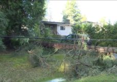 Thousands lose power after wind storm slams southern Vancouver Island