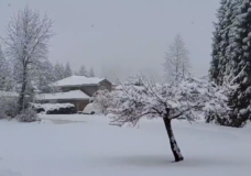 Another snowfall warning issued for parts of Vancouver Island