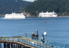 BC Ferries announces 42 per cent passenger drop in latest quarter update