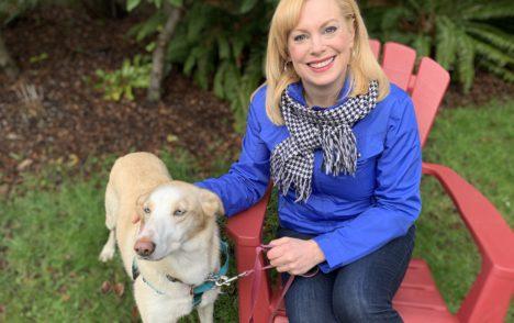 Pet CHEK: Retired sled dog Kerri needs a forever home