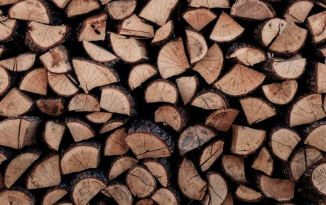 Op-Ed: Wood - a big part of who and what we are
