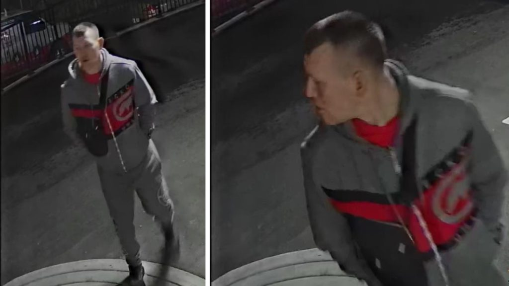 West Shore RCMP looking to identify suspect who broke into vehicle at residential building