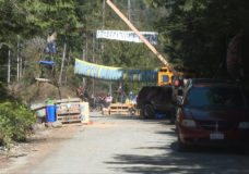 Pacheedaht First Nation asks old-growth protesters to leave its territory