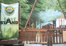 Old growth forest activists to appeal B.C. court injunction against blockades