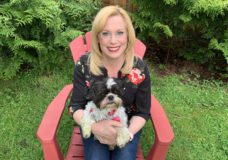 Pet CHEK: Harley the diabetic Shih Tzu needs his forever home