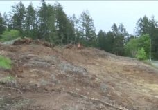 Rural municipalities are overwhelmed with soil from construction sites as CRD runs out of room