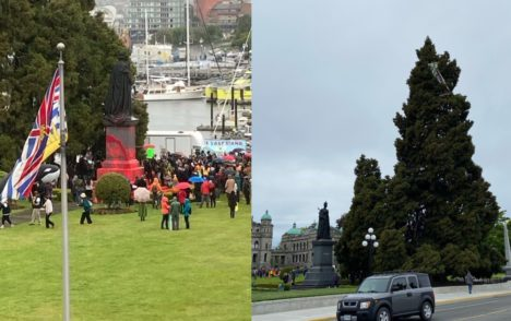 Queen Victoria statue covered in red paint, demonstrator climbs tree amid logging protests at Legislature