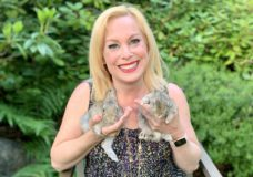 Pet CHEK: Baby bunnies and a bonded couple from Amy's Bunny Barn