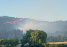 Brush fire grows near residential area north of Port Alberni