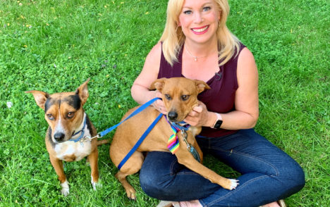 Pet CHEK: Sweet pups Luca and Charlie from Cat's Cradle Animal Rescue