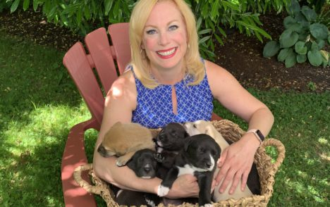 Pet CHEK: Rosie's puppies will be ready for adoption soon!