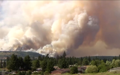 Billions in losses, thousands could die if wildfire response unchanged: report