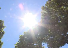 Eastern Vancouver Island braces for another heat wave after warning issued