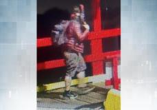Comox Valley RCMP seek suspect in boat theft