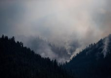 B.C. wildfire count nears 250 but cooler temperatures, light rain bring some relief