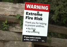 Record temperatures increasing risk of urban forest fires to 'extreme'